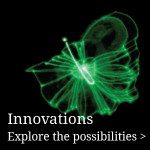 fractalis-innovations-explore-the-possibilities